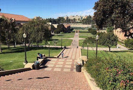 アメリカ ロサンゼルス カルフォルニア大学ロサンゼルス校(UCLA)キャンパスを観光!