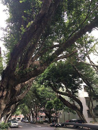 小上海 台北 サニーヒルズ 民生公園